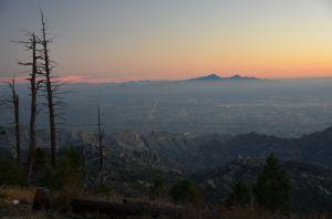 TucsonNight